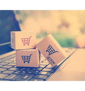 ecommerce - Punto Express